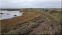 TM2222 : Kirby-le-Soken: Sea defence embankment and wall near Peter's Point by Nigel Cox