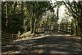SX7882 : Wray Valley Trail at Casely Bridge by Derek Harper
