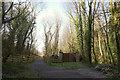 SX7783 : Wray Valley Trail by Derek Harper