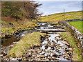 SD8780 : Green Field Beck, Beckermonds by David Dixon