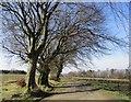 NS4760 : Road to Glenburn Reservoir by Alan O'Dowd