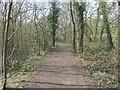 SE3423 : Perimeter path, Stanley Marsh local nature reserve by Christine Johnstone