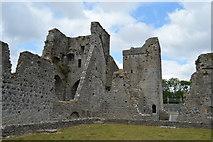 S4943 : Kells Priory ruins by N Chadwick