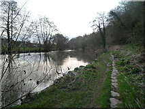 SO5074 : Path by the River Teme (Ludlow) by Fabian Musto
