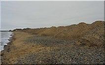 NO3901 : Dune stabilisation by Bill Kasman