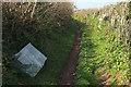 SX8765 : Flytipping, Windmill Lane by Derek Harper
