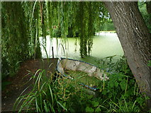 SO3656 : Boat in the Duck Pond at Westonbury Mill Gardens by Fabian Musto