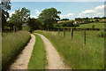 SS6531 : Track to Parsonage Lane Cross by Derek Harper