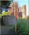 NT3497 : MacDuff's Castle by Mat Fascione