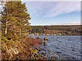 NH5935 : Loch Ness at Tor Point by valenta