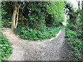 """TF4411 : A junction in the footpath on """"Roman Bank"""" in Leverington by Richard Humphrey"""