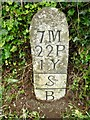 SX3258 : Turnpike Terminus Marker at Trerulefoot by Rosy Hanns