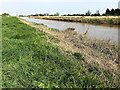 TF4004 : On the edge of The River Nene in Guyhirn by Richard Humphrey