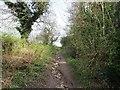 SO9094 : Red Lane Path by Gordon Griffiths