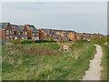 SE3027 : Path through Sharp Lane Plantations by Stephen Craven