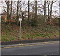 SO2814 : Bilingual sign alongside the A40 Brecon Road, Abergavenny by Jaggery