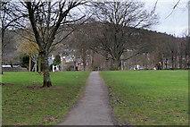 NT2540 : Peebles, Victoria Park by David Dixon