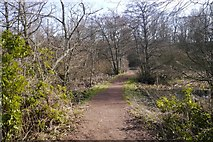NT5682 : East end of the Balgone Lake by Richard Webb