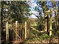 ST1136 : Old kissing gate by Marika Reinholds
