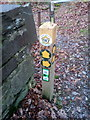 SH6166 : A busy waymark post on the bank of Afon Ogwen, Bethesda by Meirion
