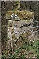 NS3255 : Maich Water railway bridge by Thomas Nugent