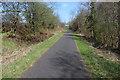 NS3355 : Lochwinnoch Loop Line cycle path by Thomas Nugent