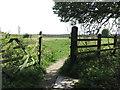 NZ3271 : Five Bar Gate, South Wellfield by Geoff Holland