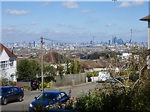 TQ3473 : View from the Horniman Ridge by Brian Whittle