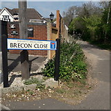 SZ0896 : Northbourne: Brecon Close by Chris Downer