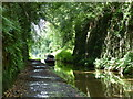SJ6930 : Narrowboat in the Woodseaves Cutting by Mat Fascione