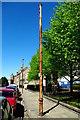 TL4557 : Stinkpipe 19 in Trumpington Street by Tiger