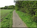 NZ3271 : Public Footpath, South Wellfield by Geoff Holland