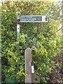 NZ3271 : Public Footpath Sign, South Wellfield by Geoff Holland