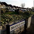SZ0895 : Northbourne: Brockley Road by Chris Downer