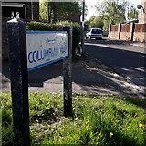 SZ0794 : Ensbury Park: Columbian Way by Chris Downer