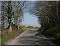 NH5244 : B9164 road, by Dunballoch by Craig Wallace