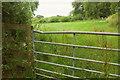 SO6288 : Grass field near former armaments depot by Derek Harper