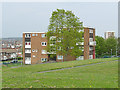 SE2633 : Low-rise housing on Theaker Lane by Stephen Craven