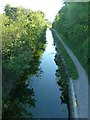 SP9011 : Wendover Arm: Southwest of Drayton Bridge by Rob Farrow