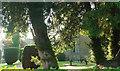 SO5377 : Churchyard, Middleton by Derek Harper