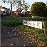 SZ0995 : Muscliff: Cox Avenue by Chris Downer