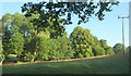 SO5478 : Streamside trees below Measons by Derek Harper