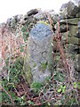 NZ0054 : Old Boundary Marker by Mike Rayner