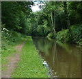 SJ6931 : Shropshire Union Canal in the Woodseaves Cutting by Mat Fascione