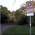 SZ0596 : Bear Cross: Duck Lane by Chris Downer