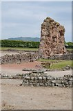 SJ5608 : Wroxeter Roman City by Philip Halling