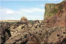 SX6643 : Foreshore near the Long Stone by Derek Harper