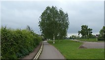 SX9192 : Part of the Exe Valley Way, Exwick by David Smith