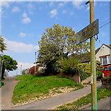 SZ0795 : East Howe: Ericksen Road by Chris Downer