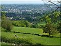 ST7168 : Higher than Upper Weston by Neil Owen